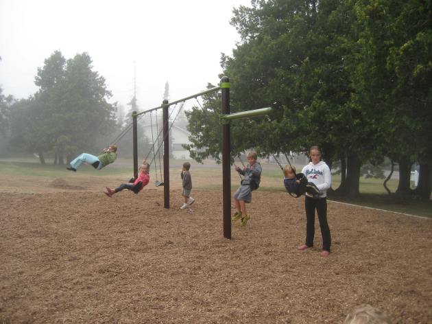 Swinging in the mist